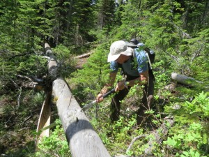 Trail Clearing with 'Silky' Saw