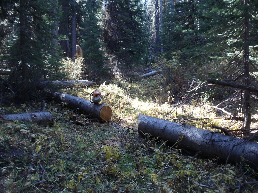 Removing Blow-downs on Antley Creek Trail