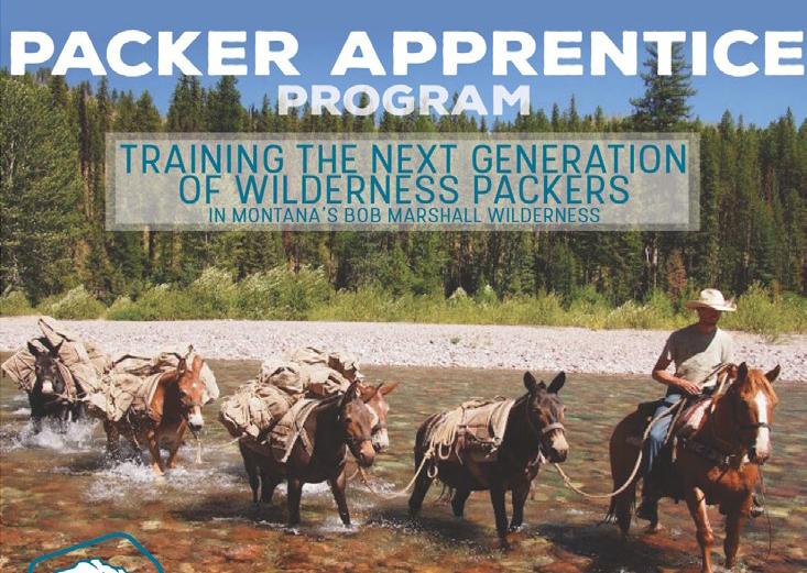 Packer Apprentice Program