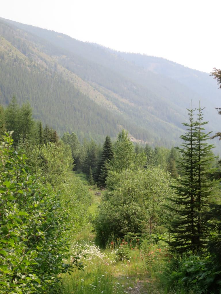 150709 - Trail 3 - Smoke