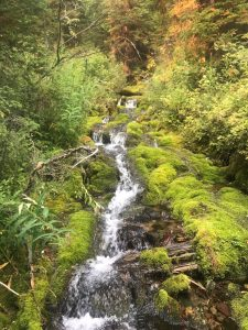 Waterfall along trail to Thompson-Seton, Sep 10, 2017 - photo by Dick Leigh
