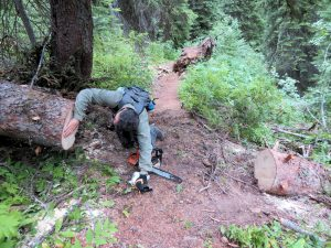 Counting Rings, Chain Lake Trail #377, Aug 8, 2020 - W K Walker